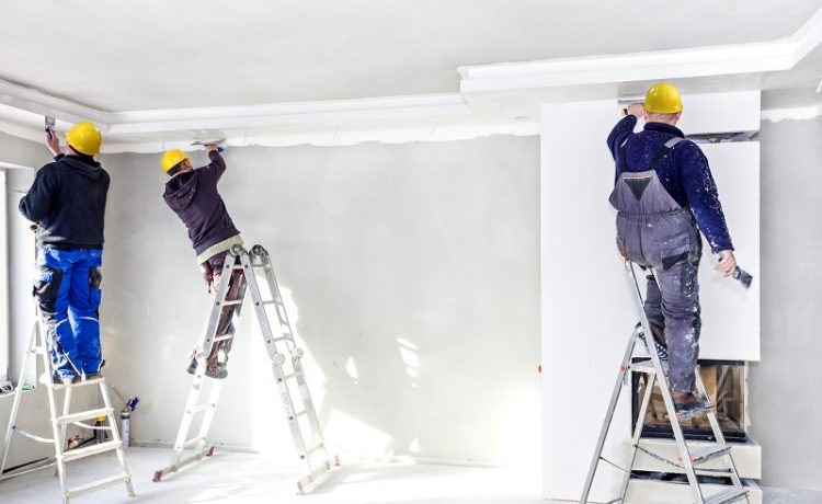 choose the best plasterer